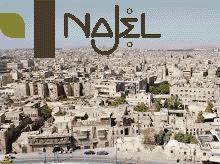 Distributeur Najel Aleppo Olijfzeep