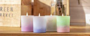 Wholesaler distributor natural vegan scented candles Joik